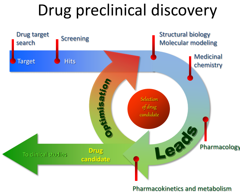 drug_cycle_en