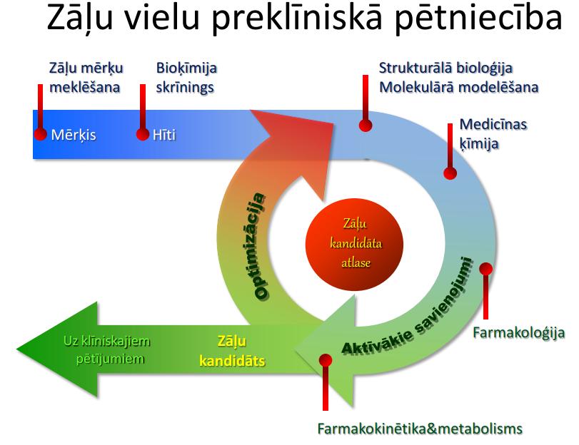 drug_cycle_lv