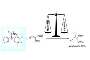 Veliks_Org.Biomol.Chem